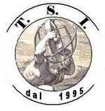T.S.I. S.r.l. Unipersonale